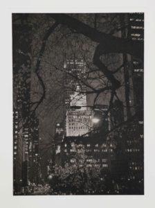 """Photogravure """"Central Park"""" NY 2015"""