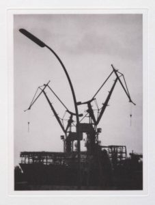 "Photogravure ""Die Vögel"" Hamburg 2013 23,8x17,9 (30x40) Edition 9"