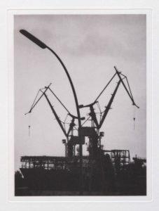 """Heliogravüre """"die Vögel"""" Hamburg 2013 19,9x23,8 (30x40) Auflage 9"""