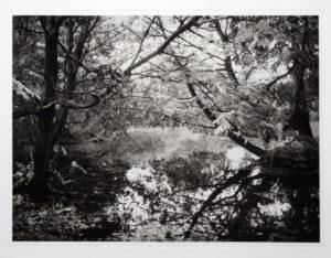 "Heliogravüre ""Herbst"" 38,8 x 28,8 (50x40) Aflge.7-"